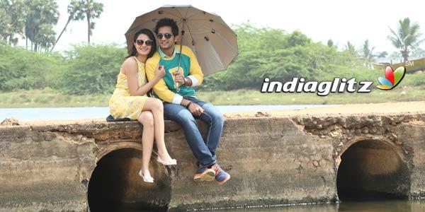 Aakatayi Review