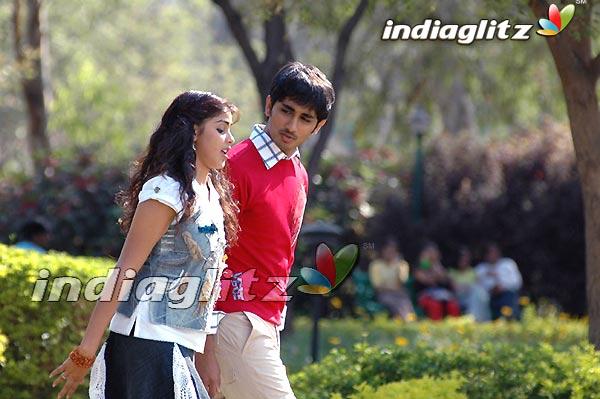 Bommarillu Photos - Telugu Movies photos, images, gallery, stills