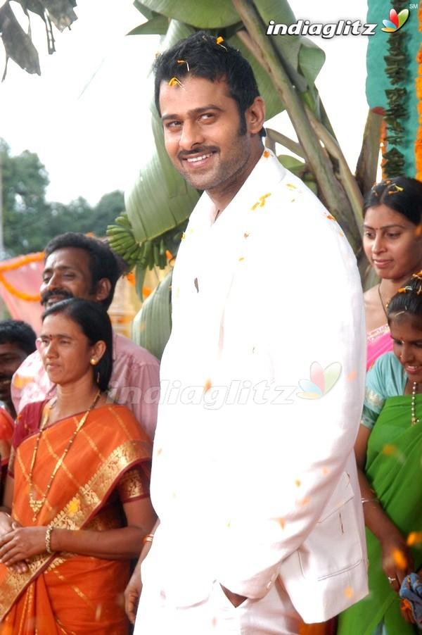 Mr Perfect Telugu Movie Free Download Mp4instmankgolkes