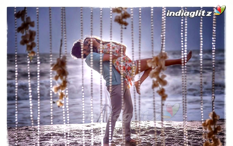 Shailaja Reddy Alludu