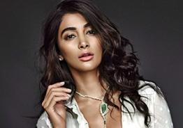 Is Pooja Hegde doing Suriya's next? Here you know!