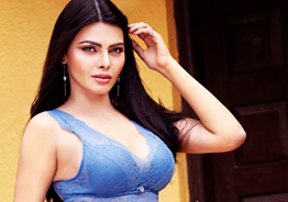 The director asked me to feel his private parts: Sherlyn Chopra