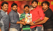 'Green Signal' Platinum Disc Function