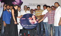 'Inka Emi Anukoledhu' Audio Launch