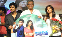 'Karthikeya' Audio Launch