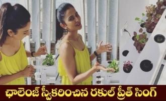 Actress Rakul Preet Accpets Samantha's #GrowwithmeChallenge