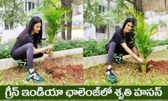 Actress Shruti Hassan Accepts Mahesh Babu's Green India Challenge | IG Telugu