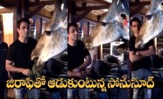 Actor Sonu Sood Feeding Grass To Giraffe With His Mouth