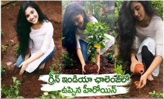 Uppena Actress Krithi Shetty Accepts Green India Challenge