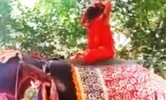Baba Ramdev falls off while performing yoga on an elephant