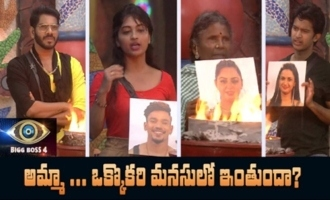 Big Boss 4 Day -15 Highlights | BB4 Episode 16 | BB4 Telugu | Nagarjuna | IndiaGlitz Telugu