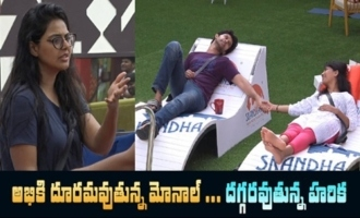 Big Boss 4 Day -18 Highlights | BB4 Episode 19 | BB4 Telugu | Nagarjuna | IndiaGlitz Telugu
