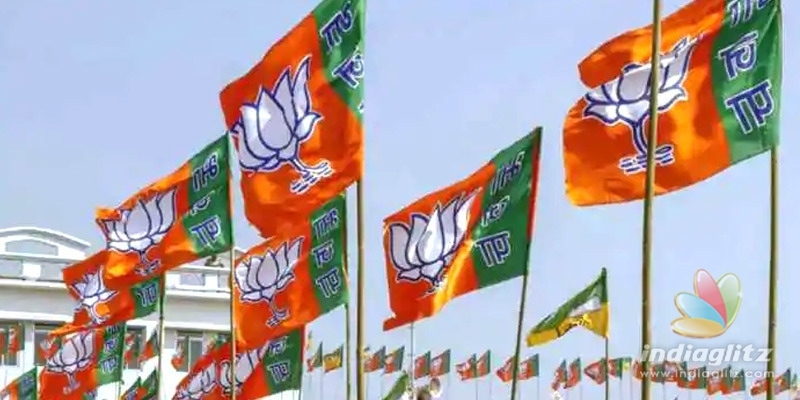 BJP wins Rajasthan panchayat elections amid rich farmers protests