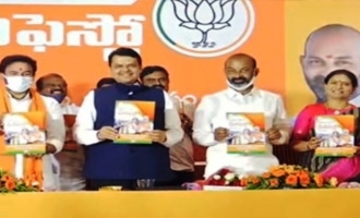BJP manifesto makes big promises: Find out what they are