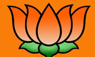 BJP gives ticket to TikTok sensation