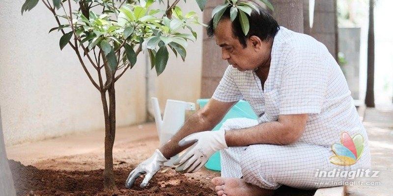 Pic Talk: Brahmanandam participates in Haritha Haram