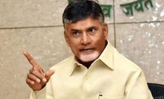 Your government is humanity personified: Chandrababu Naidu