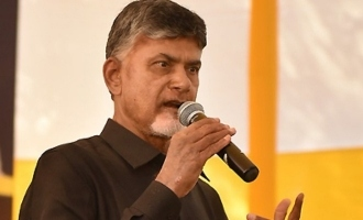 Naidu's Delhi protest's cost: Rs 10 Cr for one day