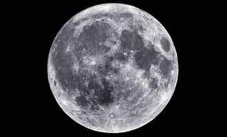 China grows first plant On Moon
