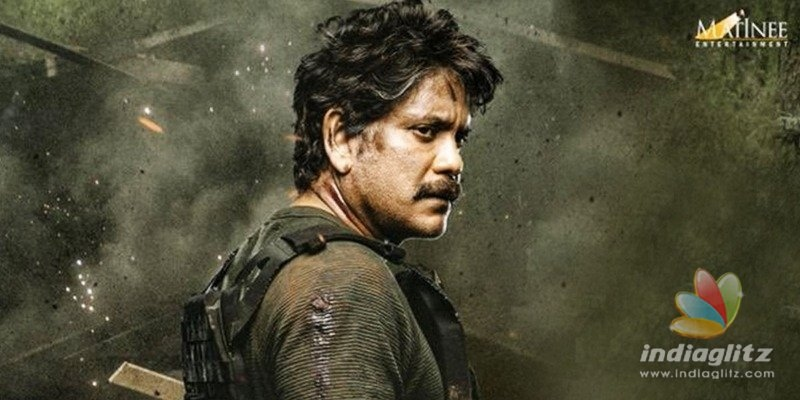 Here is why Nagarjunas Wild Dog might be criticized