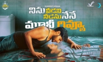 Ninu Veedani Needanu Nene Movie Review