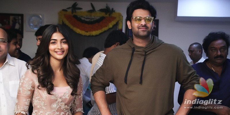 Prabhas fans troll director in unanimous voice!