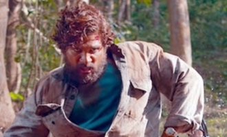 'Pushpa' teaser has set an all-time record: Makers