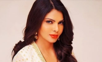 Can you dare ask about bo*bs size of a star heroine?: Sherlyn Chopra
