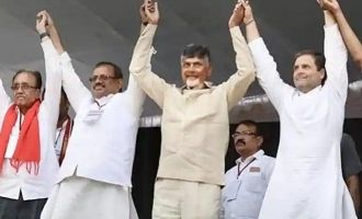 Cong-TDP leaders urge Governor to treat combine as 'single entity'