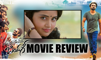 Vunnadi Okate Zindagi Movie Review
