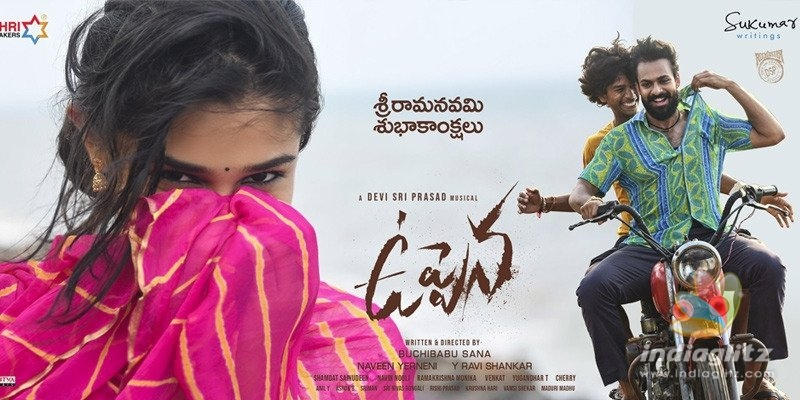 New posters of Uppena delight audience
