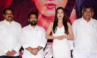'Vadaladu' Pre Release