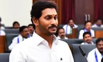 Will center give special status to AP